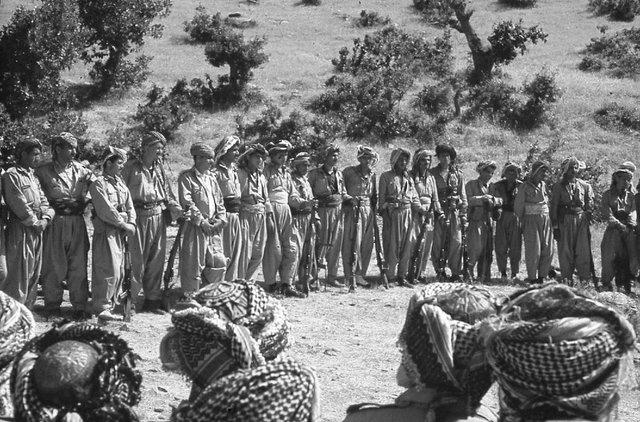 המחלקה הכורדית
