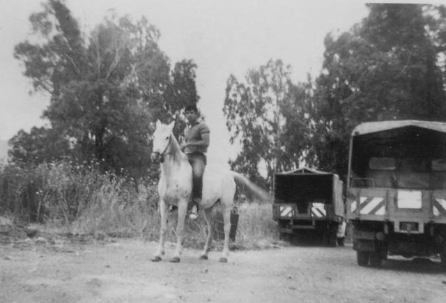 ליוסף הייתה סוסה מגיל עשרה, איתה הגיע כל בוקר לבית הספר התיכון בטבריה