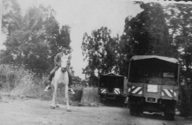 יוסי ג'ינו והסוסה בנעורים