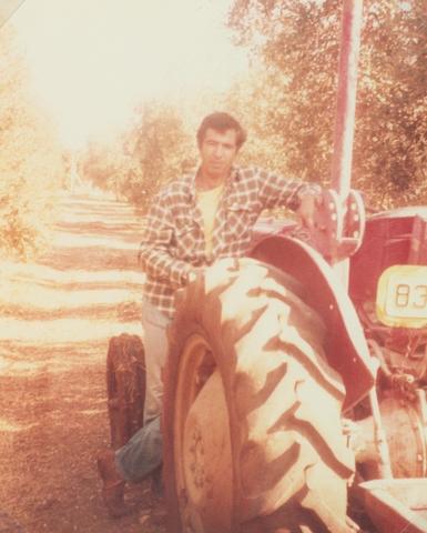יוסף 1981